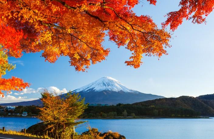 Autumn Leaves and Mount Fuji Japan